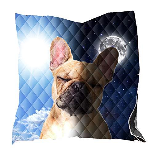 Colcha de Animales 3D Yin Yang Perro Mascota Caballo Marrón Patrón de Tortuga Verde Microfibra Poliéster Ropa de Cama Edredón Manta Colcha Acolchada Blanket Bedspread (Multicolor 3,200 x 230 cm)