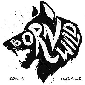 Born Wild (feat. Chedda Broccoli)