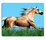 galloping horse Equine field farm Mouse Pads Customized Made to Order Support Ready 9 7/8 Inch (250mm) X 7 7/8 Inch (200mm) X 1/16 Inch (2mm) Eco Friendly Cloth with Neoprene Rubber Liil Mouse Pad Desktop Mousepad Laptop Mousepads Comfortable Computer Mouse Mat Cute Gaming Mouse pad
