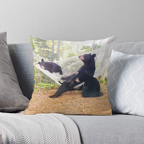 Bear Blue North Momma Bears Carolina Cubs Western Black Mountains Appalachian Wildlife Ridge - Western - Cute Design Polyester Home Sofa Decorative Cushion Cover Case Customize Square Pillowcase Pri