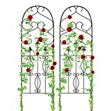 Amagabeli Garden Trellis GTP004 60' x 18' Rustproof Black Iron Potted Vines Vegetables Flowers Patio Metal Wire Lattice Grid Panels for Ivy Roses Cucumbers Clematis Supports 2 Pack