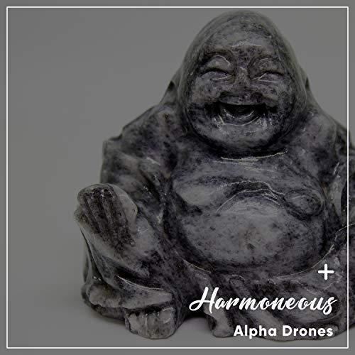 #10 Harmoneous Alpha Drones