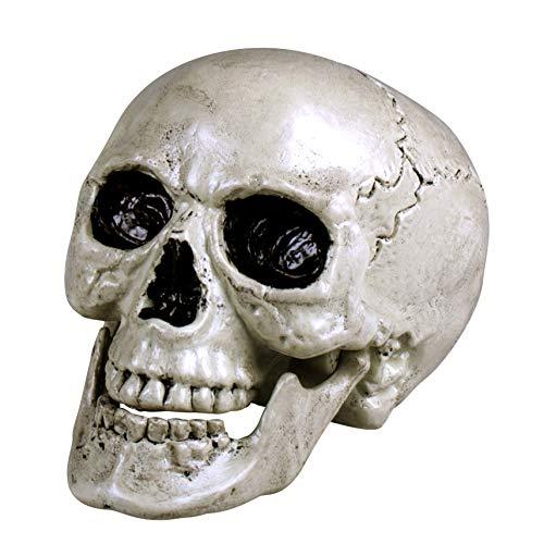 HEITMANN DECO Totenkopf-Schädel mit beweglichem Kiefer - Horror Totenkopf Totenschädel - Gruselige Party Dekoration für Halloween