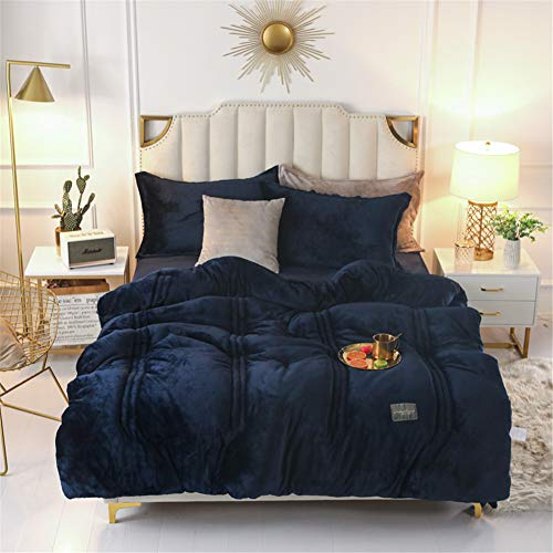 GYHH Winter Quilt,Thickened Warm Flannel, New Coral Milk Velvet Winter Quilt Core for Single and Double Winter (Navy,220 * 240cm/5kg)
