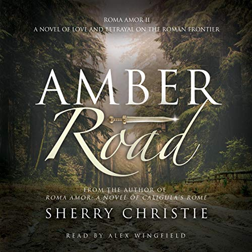 Amber Road Audiobook By Sherry Christie cover art