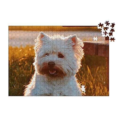 Puzzles personalizados 280 piezas con foto y texto | Máxima