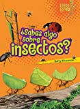 ¿Sabes algo sobre insectos? (Do You Know about Insects?) (Libros Rayo Conoce Los Grupos de Animales) (Spanish Edition)
