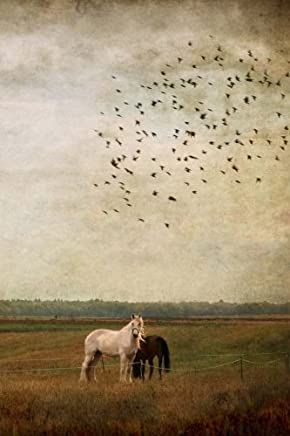 Horses Notebook