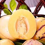 Olodui1 Samenhaus 20 Stücke Melone Samen hohe ernährung Obstsamen Bonsai Pflanzen Hausgarten Blumensamen