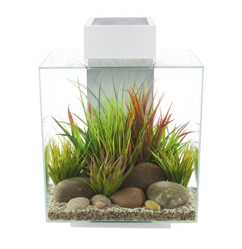 Fluval EDGE Aquarium Kit, Aquarium with LED Lighting and 3-Stage Filtration System, 6 Gallons, Black, 15385A1