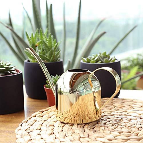 Asvert Regadera Metal de Acero galvanizado,Rregadera Interior,Boca Larga para Plantas de hogar, diseño contemporáneo de Metal con Boquilla Estrecha y Mango Alto(Oro)