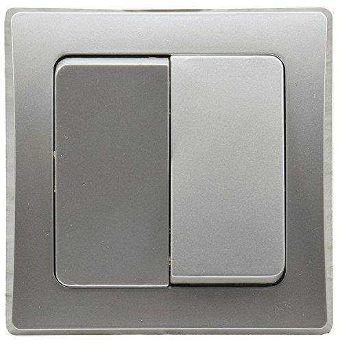 Delphi - Interruptor Doble (250 V, 10 A, Incluye Marco), Color Plateado