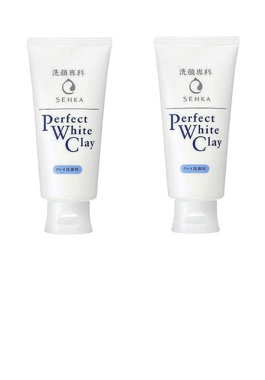 ファーム発言する強制【2個まとめ買い】専科 パーフェクトホワイトクレイ 洗顔料 120g