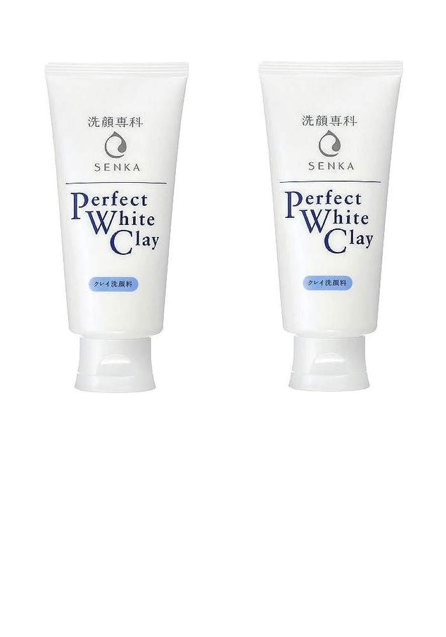 願望慈善掻く【2個まとめ買い】専科 パーフェクトホワイトクレイ 洗顔料 120g