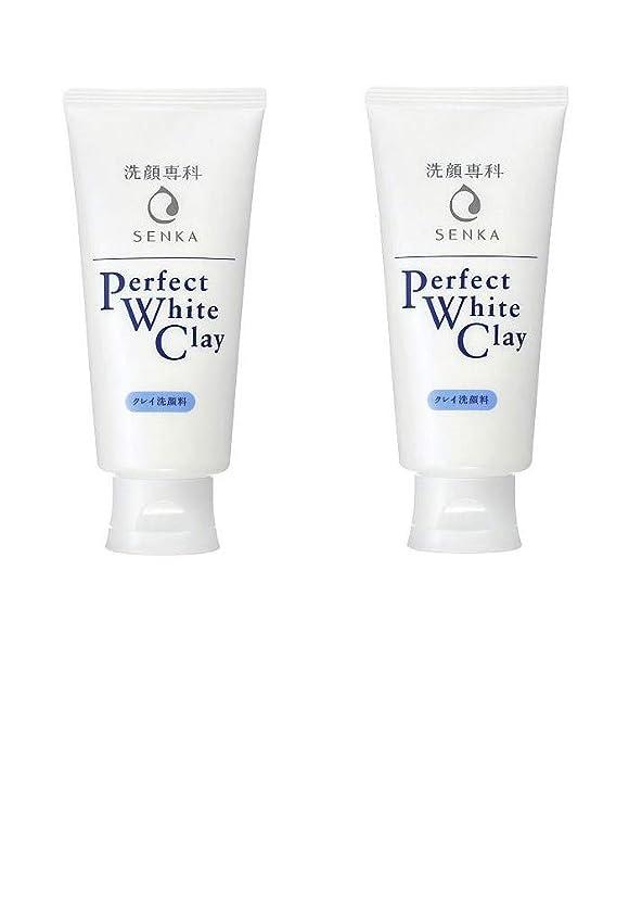 広々記念碑ビジョン【2個まとめ買い】専科 パーフェクトホワイトクレイ 洗顔料 120g