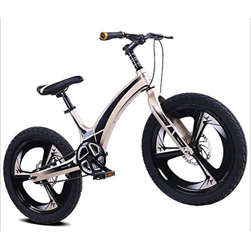 """WXX Bicicleta De Montaña para Niños De Aleación De Magnesio De 20""""El Asiento Se Puede Ajustar Y Desconectar Freno De Disco Bicicleta De Montaña De Una Sola Velocidad Bicicletas,Oro"""