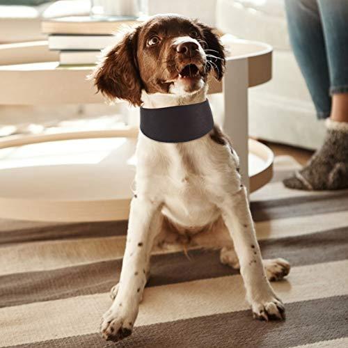 DAUERHAFT Collar de Whippet, 4 mm de Grosor, Collar de Perro martingala Extra Suave Que Protege el Cuello del Perro de Lesiones,