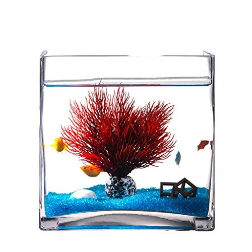 Xuejuanshop—Peceras Personalidad Creativa Cuadrado Acuario Acuario de los Peces de Vidrio Sala de Estar de Escritorio Tortuga Tanque Acuario Decoración (tamaño : L)