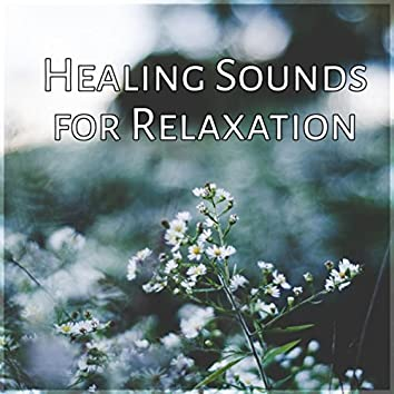 Healing Sounds for Relaxation – Ocean Waves & Rain Sounds, New Age Music, Total Relax, Deep Relaxation & Meditation
