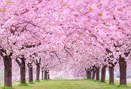 Fondo de fotografía Flores de jardín de Primavera Hermoso Paisaje Natural Boda Niños Telón de Fondo Foto de teléfono Estudio fotográfico A13 9x6ft / 2.7x1.8m