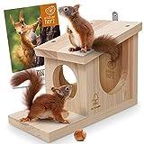 wildtier herz | Comedero para ardillas resistente a la intemperie I de madera maciza atornillada I...