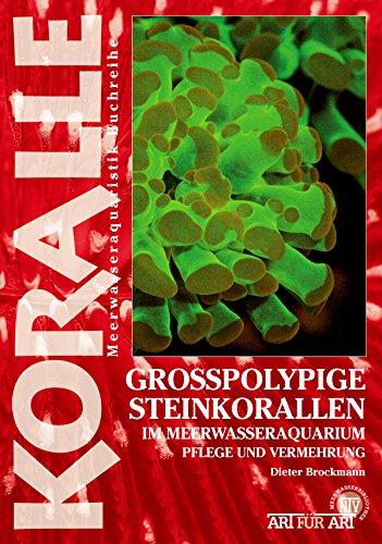 Grosspolypige Steinkorallen im Meerwasseraquarium: Pflege und Vermehrung (Art für Art)