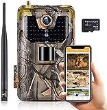 SuntekCam Cámara de caza 4G 3G MMS SMTP 20MP 1080P Wildlife Cámara impermeable IP66 Trail Camera, Visión Nocturna invisible, obtener fotos y vídeos desde MMS y correo electrónico (SD Incluida 16 GB)