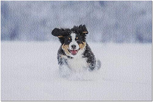 YYTOOF HD Berner Bergwelpe läuft im Schnee im Winter 9024874 (19x27 Premium 1000-teiliges Puzzle Made in USA!)