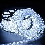 Forever Speed 50M Tubo Luminoso a LED,Flessibile a LED Tubo per Esterna Interna bianco freddo, Fiabe LED Tubo Luminoso per Natale,Matrimonio,Vacanze,Giardino,Decorazione del Tetto e Illuminazione IP65