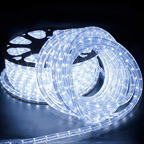 Forever Speed 20M Tubo de LED Manguera LED Luces de Tira de Manguera Exterior e Interior Blanco Frío,Tiras LED Adecuado para Decoración e Iluminación Navidad, Halloween, Boda,Fiesta, Hotel, Jardín