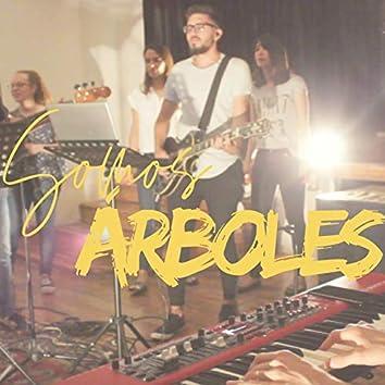 Somos Árboles (En Vivo)