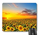7AN.M Sunflower Warm Color Sunrise in The Field Landscape Mouse Pad, Beautiful Sunflowers Blooming Nature Scene Mouse Pads for Office Work Decor