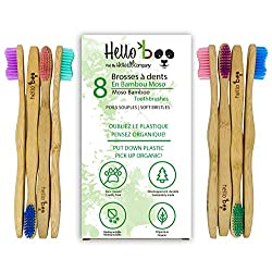 best bamboo toothbrush review