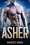 Asher (Hawk Valley Mountain Men Book 1)