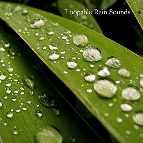 Nature Sounds, Rain Sounds & Baby Sleep Sounds