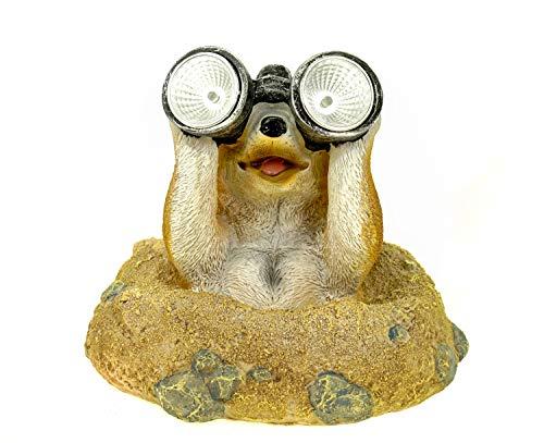 Kremers Schatzkiste Erdmännchen Eddy mit Solar LED Fernglas Figur Gartenfigur 20 cm Solarlaterne Meercat Tierfigur