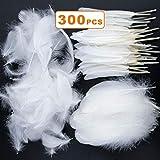 MOPHY 300 piezas Plumas blancas para DIY Dream Catchers Fiesta de cumpleaños Fiesta de bodas Decoraciones para fiestas (3 tamaños)