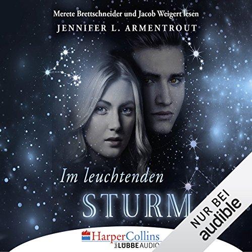 Im leuchtenden Sturm Titelbild