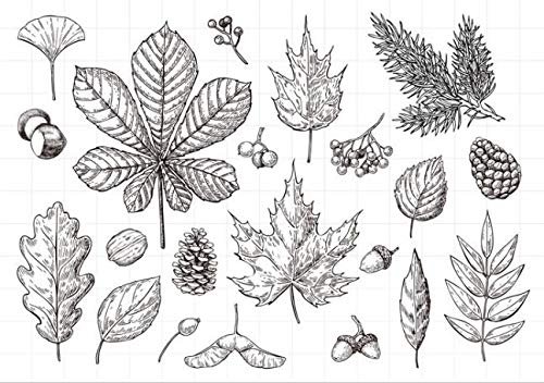 Leaf Transparent Clear Silicone Stamps for DIY Scrapbooking/Card Making/Kids Christmas Fun Decoration Supplies A643