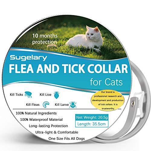 Collar Antipulgas para Gatos, 100% Natural Ajustable Collar Antipulgas, Repele Eficazmente Piojos, Pulgas, Parásitos, 35,5cm Adecuado para Gatitos, Gatos Medianos y Grandes
