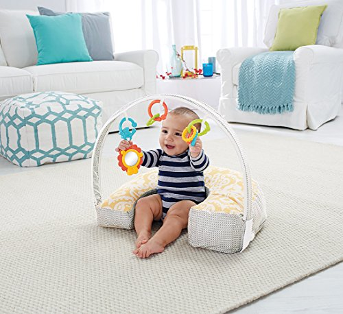 Fisher-Price - Cojín de Lactancia 4 en 1 (DGY01-2)