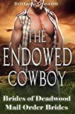 The Endowed Cowboy (English Edition)