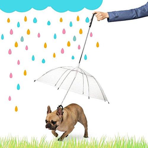 Ducomi® Dogbrella Regenschirm für Hunde und Welpen komplett mit Leine - leicht und handlich - Offri Das Meglio an Ihrem Hund während Le Tages von Pioggia - Ø 75 cm