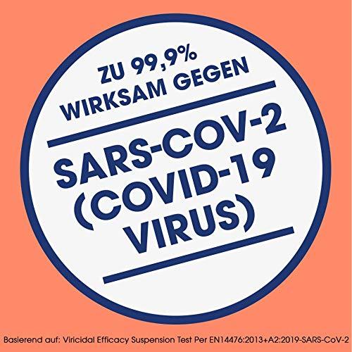 Sagrotan Wäsche-Hygienespüler Frisch, Desinfektionsspüler für hygienisch saubere und frische Wäsche, 4 Stück (4 x 1,5l) - 8
