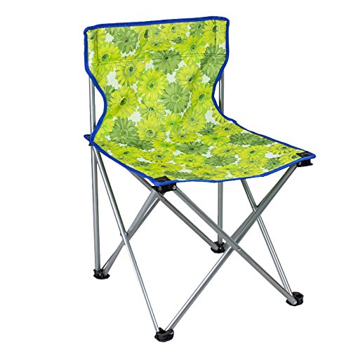Portable Schilderen Schetsen Chair, Oranje bloemen Kunst Ultralight Folding Stoelen met Rugzakken, Multifunctionele Lounge Kruk, 36 * 60CM 417 (Color : Green)