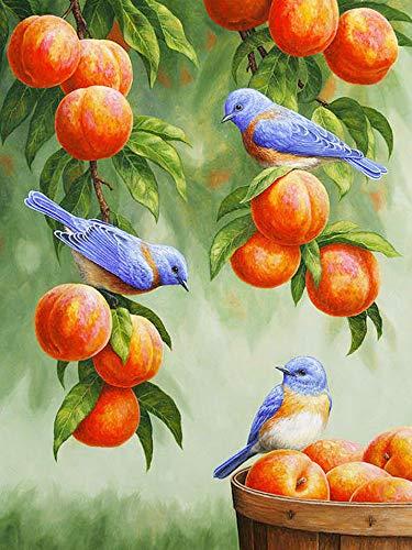 100/300/500/1000 piezas juego de rompecabezas juguetes para niños adultos,Pájaro de la fruta juego casual clásico