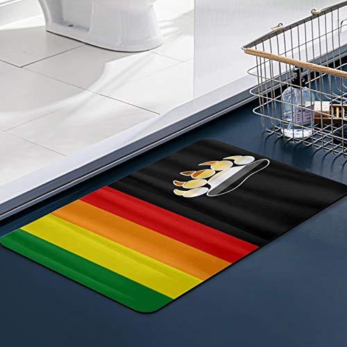 FengYe Carvapet Alfombras Cocina Lavable Antideslizante Bandera Gay del Oso LGBT, Alfombrilla Alfombra de Baño Alfombrillas Cocina 50x80 cm