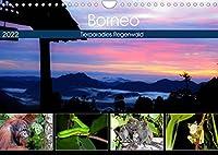 Borneo - Tierparadies Regenwald (Wandkalender 2022 DIN A4 quer): Eine tierische Bilderreise durch Borneo (Monatskalender, 14 Seiten )