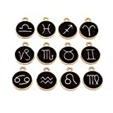 Airssory 12 Pcs Double-Sided Twelve Constellations Black Enamel Charms Zodiac Signs Charm for Jewelry Making DIY Crafts