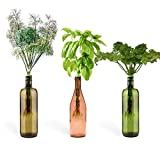 Urban Leaf - Windowsill Herb Garden Starter Kit - Self Watering Indoor Bottle Garden Kit - incl 3 Types Herb/Flower Seeds - Basil, Parsley and Dill